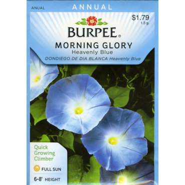 Burpee Morning Glory Heavenly Blue Seed Packet